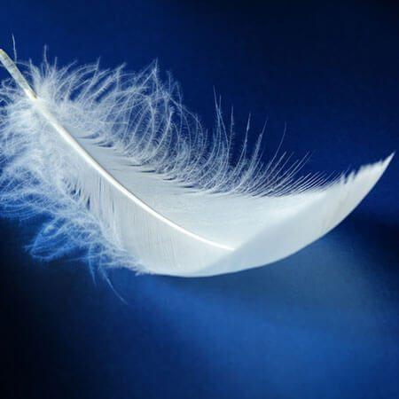 Texte hypnotique – La plume blanche