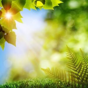 Script hypnotique – Induction Juin: Solstice d'été, le moment le plus long