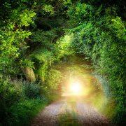 Script hypnotique - Reprendre la direction de son chemin de vie