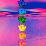 Script hypnotique – Voyage au cœur des chakras