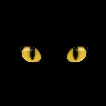 Script hypnotique – Se libérer de la phobie des chats (visualisation thérapeutique)