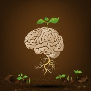 Méthode Le jardinier de l'esprit - cultiver les pensées positives (six scripts hypnotiques)