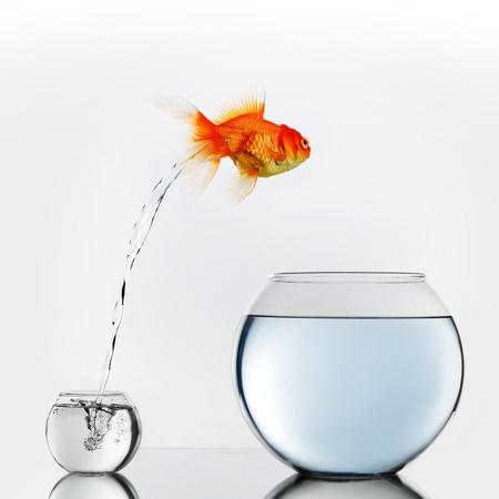 Hypnoprotocole – Difficulté à bien vivre le changement
