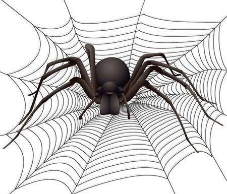 Script hypnotique - Arachnophobie et peur des araignées (hypnose directive)