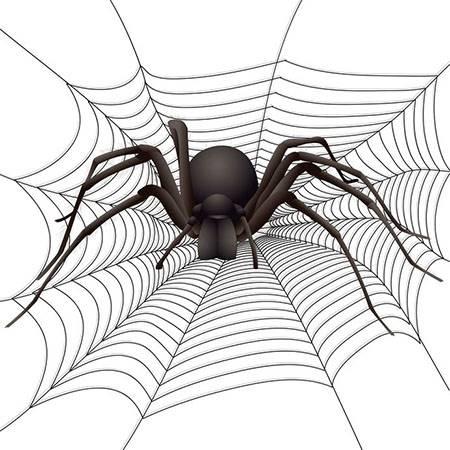 Script hypnotique – Arachnophobie et peur des araignées (hypnose directive)